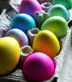 visszér a tojásokon
